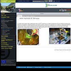 Collège & Lycées Saint Joseph - ANCENIS - Atelier imprimante 3D : Bienvenue