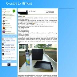 Collège La Hêtraie - Le sténopé