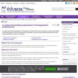 Collège - La 3e prépa-pro