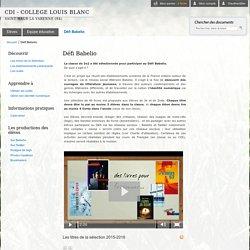 CDI - COLLEGE LOUIS BLANC