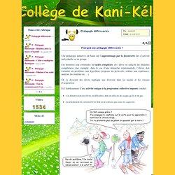 Le Site Du Collège De Kani-Kéli - Pédagogie différenciée