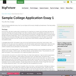 College Essay - Sample Application Essay 1