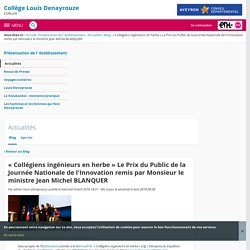 « Collégiens ingénieurs en herbe » Le Prix du Public de la Journée Nationale de l'Innovation remis par Monsieur le ministre Jean Michel BLANQUER - Actualités - COLLEGE LOUIS DENAYROUZE