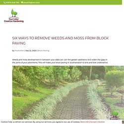 Six Ways To Remove Weeds And Moss From Block Paving