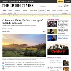 Collops and fíbíns: The lost language of Ireland's landscape