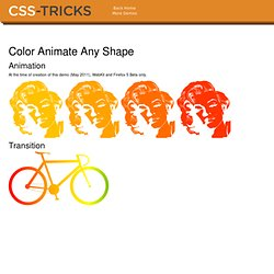 Color Animate Any Shape