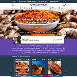 Les colorants organiques : couleurs animales et végétales