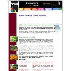 Couleurs de plantes - colorants naturels - Plantes tinctoriales