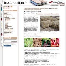 Colorants végétaux et naturels dans les tapis - Tout Sur Les Tapis