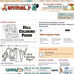 Animal Coloring Pages, Teacher Worksheets, Birthday Party Ideas, Games & Downloads | Animal Jr.