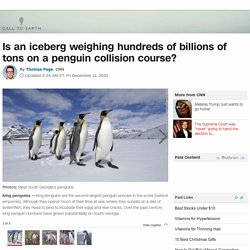 A68a: Is the colossal iceberg on a penguin collision course?