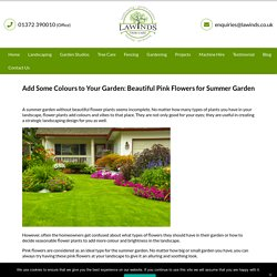 Summer Garden: Add Some Colours with Beautiful Pink Flowers