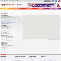 Painter Nepal