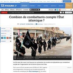 Combien de combattants compte l'État islamique?