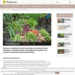 Combinatieteelt in de moestuin