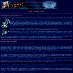 Come funzionano i mulini(ulyxes)