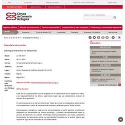 Cámara de Comercio de Bogotá - Coaching para Directivos con Enfoque DISC