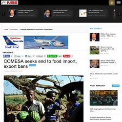 COMESA seeks end to food import, export bans - new Business Ethiopia (nBE)