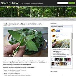 Plantes sauvages comestibles en alimentation vivante