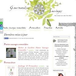 Plantes Sauvages Comestibles, Permaculture [blog]