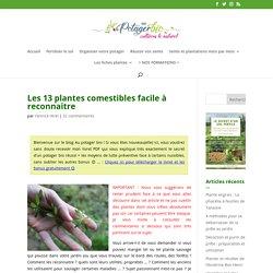 Les 13 plantes comestibles facile à reconnaitre