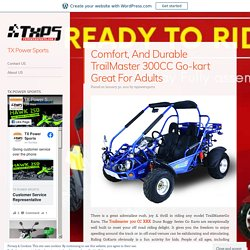 Comfort, And Durable TrailMaster 300CC Go-kart Great For Adults
