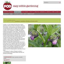 mfrey - POD easy edible gardening