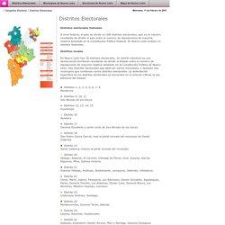 Comisión Estatal Electoral de Nuevo León