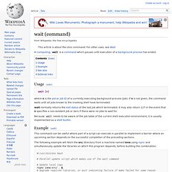 wait (command)