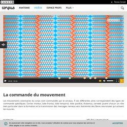 Chap C2 - vidéo pour revoir la commande du mouvement