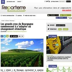REPORTERRE 22/04/15 Les grands crus de Bourgogne commencent à s'adapter au changement climatique