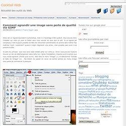 Comment agrandir une image sans perte de qualité via GIMP