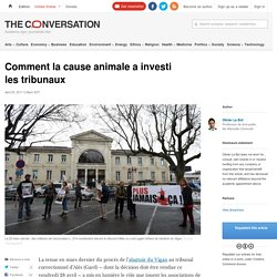 Comment la cause animale a investi les tribunaux