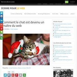 Comment le chat est devenu un maître du web