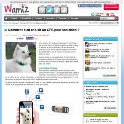 Comment bien choisir un GPS pour son chien ? - Voyager et jouer avec son chien