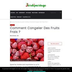 Comment congeler des fruits frais rouges ?