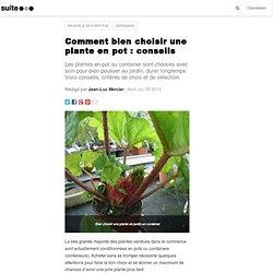 Comment bien choisir une plante en pot : conseils