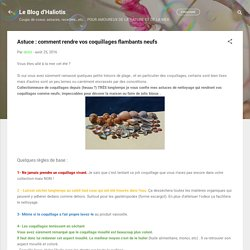 comment rendre vos coquillages flambants neufs