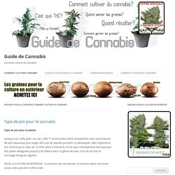 Comment cultiver du cannabis