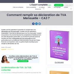 Comment remplir sa déclaration de TVA Mensuelle - CA3 ?