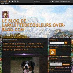 vidéo 1764 : Comment dessiner une langue de chien au pastel sec ?