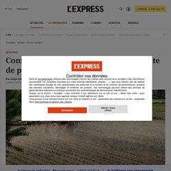 Comment expliquer la hausse de la vente de pesticides en France