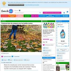 Comment faire du compost avec les feuilles mortes