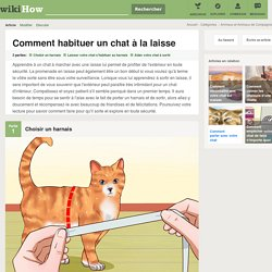 Comment habituer un chat à la laisse: 9 étapes