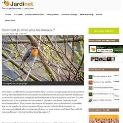 Comment jardiner pour les oiseaux ? - Le blog de Jardinet.fr