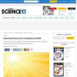 Comment les UV A modifient l'ADN