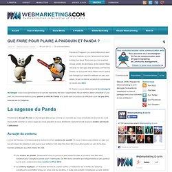 Comment lutter contre Panda et Pingouin, le zoo de Google ?