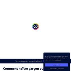 Comment naître garçon ou fille ? by Marilyn Fouquet on Genially