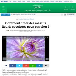 Comment créer des massifs fleuris et colorés pour pas cher ?
