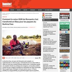 BASTA 27/02/17 Comment le coton OGM de Monsanto s'est transformé en fléau pour les paysans du Burkina Faso